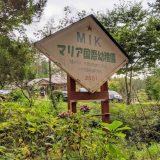 マリア国際幼稚園