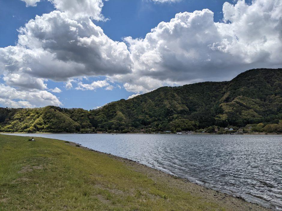 奥河口湖さくらの里公園