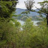 河口湖ハイキング【羽根子山】