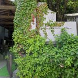 富士河口湖町のキャンプ場【精進湖キャンピングコテージ】
